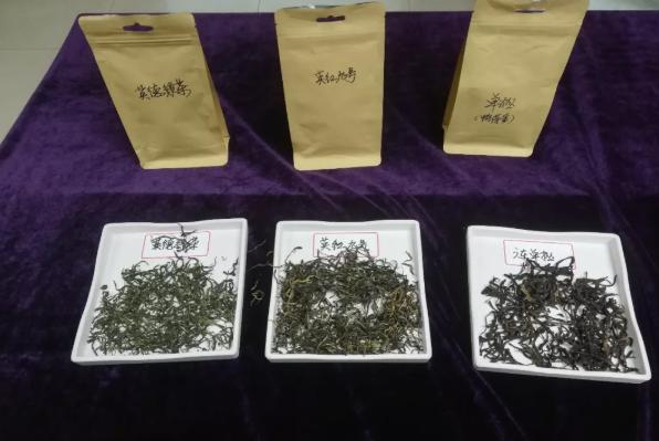 鸭屎香最贵一斤多少钱:品嗅传统芬芳,体味社区温暖